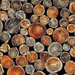 Energie + Umwelt - Holzkessel
